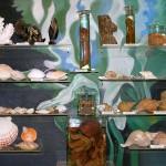 Стенд моллюсков