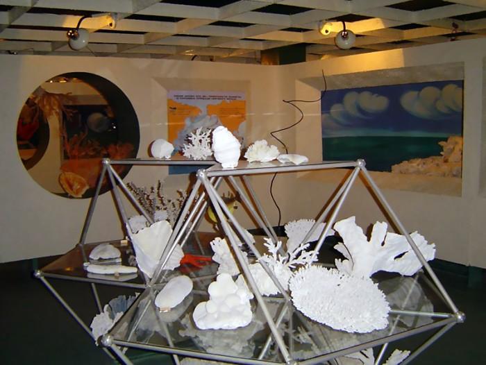 Зал 4.  «Экосистемы коралловых рифов»